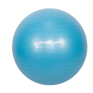 Anti-Burst Gym Ball with Foot Pump