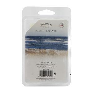 Sea Breeze Box of 6 Melts