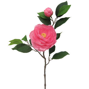 Camelia Branch with Bud and Foliage Blush Pink