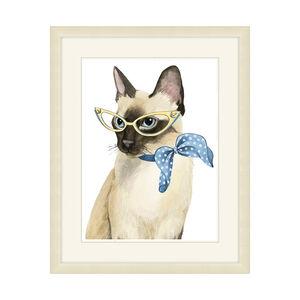 Cool Cat Framed 34x48cm
