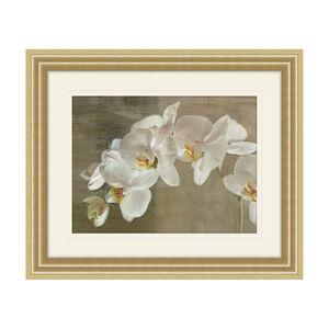White Orchid 50cm x 60cm