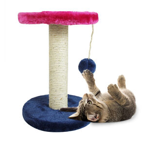 Smart Choice Cat Scratch Post