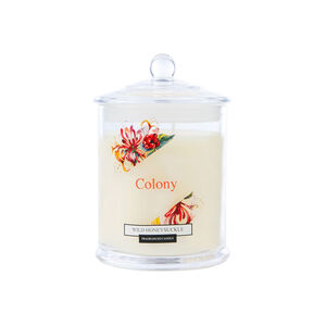 Colony Wild Honeysuckle Candle 12.6oz