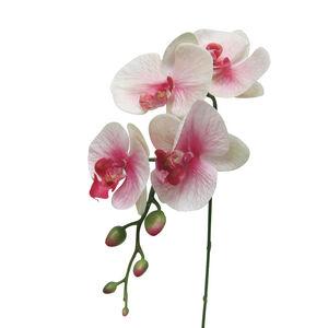Phalaenopsis Spray Flower 88cm
