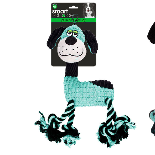Rope Leg Dog Toy With Squeaker - Blue