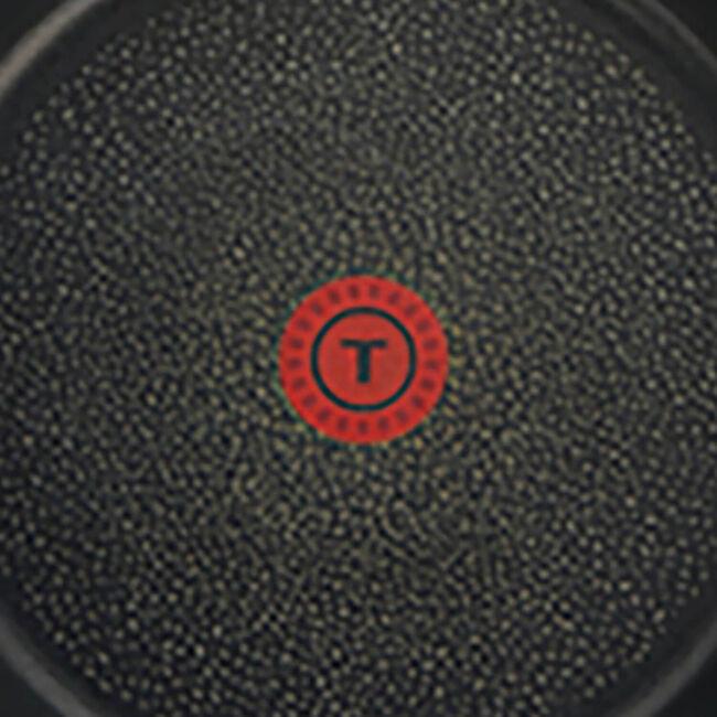 Tefal Expertise Frying Pan 24cm