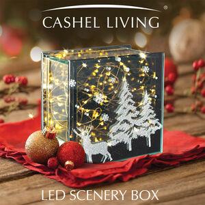 Cashel Living LED Scenery Box