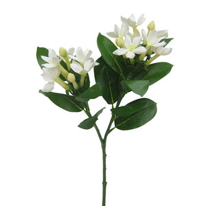 Stephanotis Spray with Foliage Bridal White 60cm