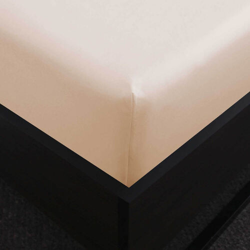 DB FITTED SHEET 500 Threadcount Cotton Cream