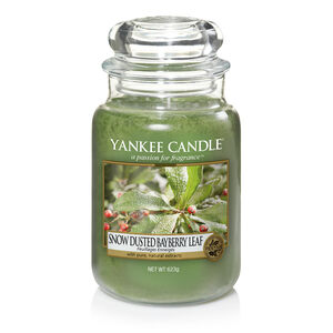 Yankee Candle Snow Dusted Bayberry Leaf Large Jar