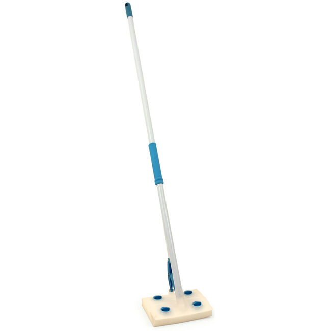 Brights Sponge Mop