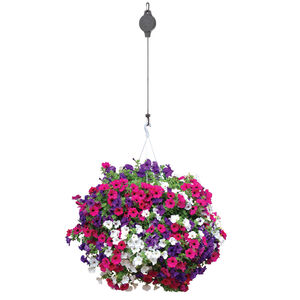 Easy Reach Pulley for Hanging Baskets