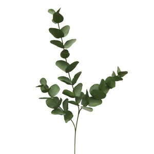 Eucalyptus Spray x 3 Foliage 70cm