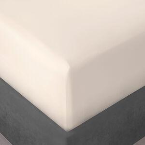 SB FITTED SHEET 500 Threadcount Cotton Cream