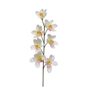 Cymbidium Spray With 7 Flowers 82cm