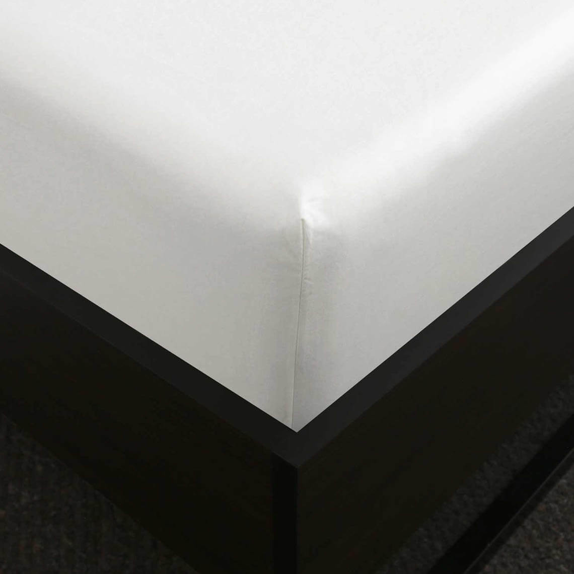 Bailey & Cole 500 Threadcount Cotton White Fitted Sheet